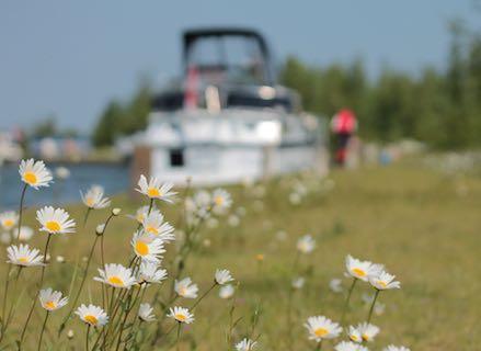 Lente, madeliefjes, motorboot... Puur genieten!